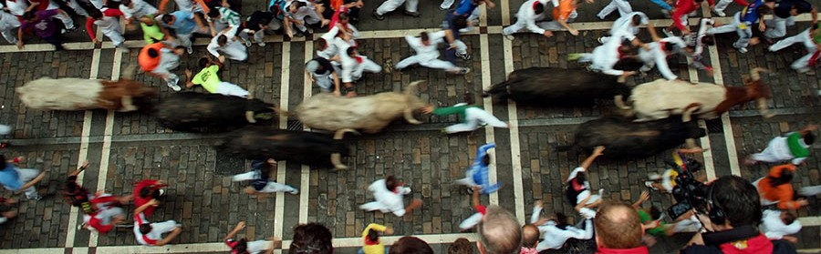 Running bulls in Pamplona