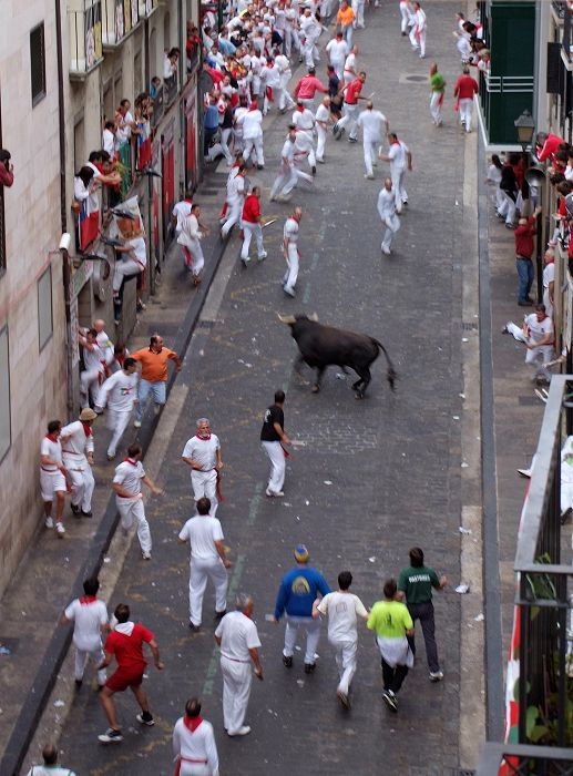 Calle Santo Domingo, a bull is left alone. The most dangerous situation