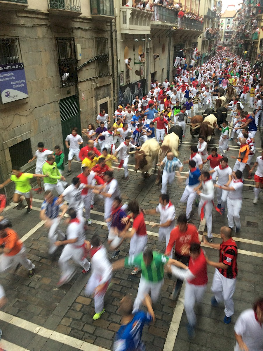 The bulls are getting closer, end of Estafeta Pamplona