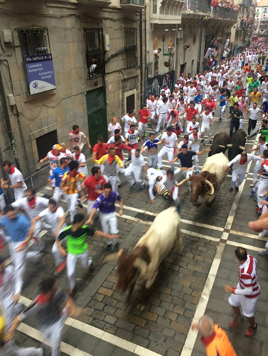 The bulls are faster than humans, end of Estafeta, Pamplona