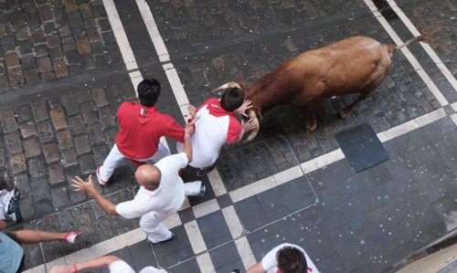 Close encounter with a bull on calle Estafeta, as see from one of my balconies